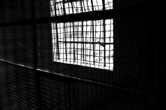 Sanatrio (renanluna) Tags: light blackandwhite luz window brasil hospital dark grid fuji shadows br sopaulo grade sp finepix contraste fujifilm janela 55 pretoebranco sombras monocromia 011 escuro contrat sanatrio 23mm hospitalmatarazzo renanluna fujifilmfinepixx100 invasofeitoporbrasileiros