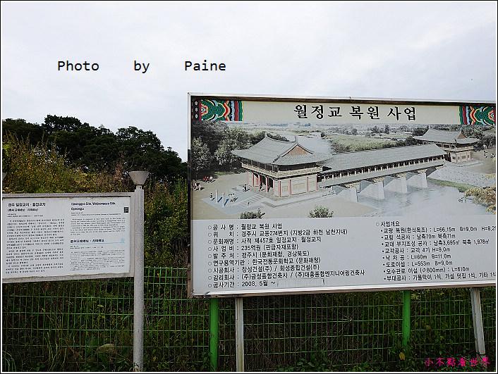 12校村 (34).JPG