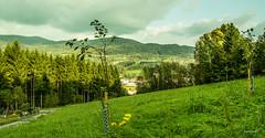 BayerischerWald,Landkreis Deggendorf (Nagorjan) Tags: bayern deutschland  bayerischerwald  deggendorf   nagorjan