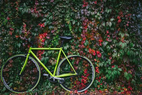 Karim's Autumn Ride x FE 35 2.8 x Frankfurt am Main x Sept 2014
