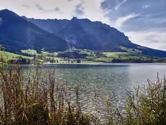 Walchsee Tirol