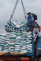 Loading Fertilizer Into Truck, Legazpi Seaport Terminal (AdamCohn) Tags: man men adam port work workers ship lift philippine