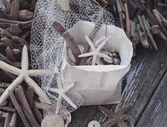 bag2 (nancyjeannem) Tags: shells bag starfish driftwood