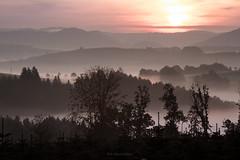 Herbstmorgen im Sauerland (bernd obervossbeck) Tags: silhouette fog sunrise treesilhouette mood nebel atmosphere sonnenaufgang atmosphre stimmung sauerland morgenstimmung frhnebel hochsauerland earlyfog baumsilhouette kckelheim werntrop