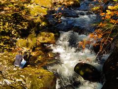 Afon Llugwy - taken from the miners bridge (sazz31) Tags: autumn fall wales river rocks y cymru betws coed afon llugwy