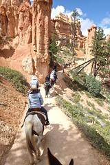 P9080434 (bluegrass0839) Tags: canyon national hoodoo bryce zion zionnationalpark brycecanyon nationalparks narrows hoodoos horsebackride parkthe
