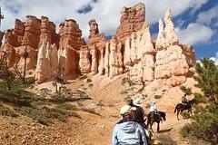 P9080524 (bluegrass0839) Tags: canyon national hoodoo bryce zion zionnationalpark brycecanyon nationalparks narrows hoodoos horsebackride parkthe