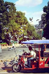 Traveler (Puneet Dhingra) Tags: life street travel india birds delhi places cart pleaces