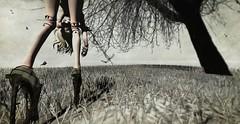Great Oaks From Little Acorns Grow (Alisa Perne - sweetandsinfulstyles.blogspot.co.uk) Tags: trees art photography blog shoes avatar sl secondlife virtual bjd virtualworld sadnovember cocodoll secondlifefashion slfashionartphotography delmay clawtooth azoury alisa26 alisaperne h22o