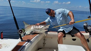 shark fishing adventure amelia island