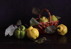 The Quinces (panga_ua) Tags: autumn light color fall fruits leaves october basket darkness shapes waterdrops chiaroscuro quinces paintedbackground woodentabletop thequinces