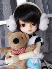 Tetsuya (CafeGalileo) Tags: doll cookie teddy bjd luts tetsuya balljointeddoll honeydelf cafegalileo