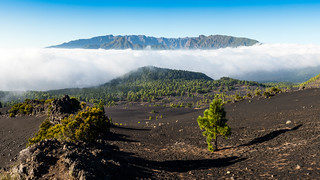 La Palma - Rough Terrain