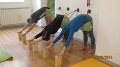 Adho Mukha Svanasana with ropes (Scuola Yoga Camerino) Tags: with ropes adho mukha svanasana