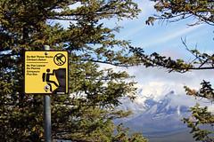 Ne pas lancer de pierres (JB by the Sea) Tags: canada sign rockies alberta banff rockymountains banffnationalpark tunnelmountain canadianrockies september2014