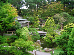 """Japanese Tea Garden from top of the Drum Bridge • <a style=""""font-size:0.8em;"""" href=""""http://www.flickr.com/photos/34843984@N07/15543868181/"""" target=""""_blank"""">View on Flickr</a>"""