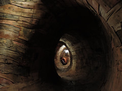 Expiral (pdrpego) Tags: de mac museu arte ibirapuera contemporanea henriqueoliveira transarquitetonica