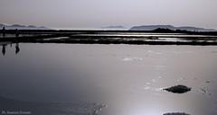 Saline di Trapani (Maurizio Formati) Tags: sea italy seascape landscape italia sicily saline sicilia maurizio trapani favignana levanzo marettimo paceco formati flickrsicilia