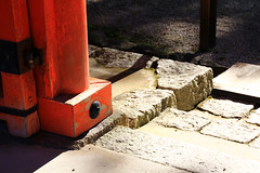 (Yorozuna / ) Tags: japan kyoto gate shrine pillar step   vermilion stonesteps     shimogamoshrine      kamomioyashrine