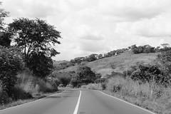 Carretera en blanco y negro (Cristbal Alvarado Minic) Tags: blackandwhite blancoynegro carretera venezuela gurico