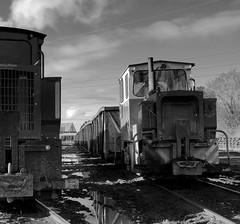 Narrow gauge industry (BogRailwayMan) Tags: bordnamona bordnamonarailways shannonbridge offaly peatrailways narrowgauge narrowgaugerailway narrowgaugelocomotive industrialrailway industriallandscapes railway diesellocomotive