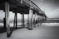 """Song of Despair"" (Photography by Sharon Farrell) Tags: songofdespair pabloneruda poetry poem nagshead nagsheadnorthcarolina nagsheadnc nagsheadfishingpier northcarolina outerbanks outerbanksnorthcarolina outerbanksnc obx obxnc noiretblanc whalebone pier fishingpier fishingdock fishingwharf"
