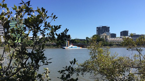 Toowong Reach, Brisbane River from Riverside Drive, West End