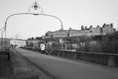 Le Pont-Vieux et les remparts de Carcassonne (Philippe_28 (maintenant sur ipernity)) Tags: pontvieux carcassonne aude 11 france europe château castle remparts olympus trip 35 24x36 argentique analogue camera photography film caffenol