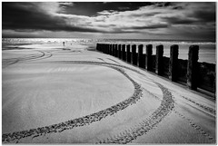 Circles in the sand (Hugh Stanton) Tags: groins beach walker dog appicoftheweek