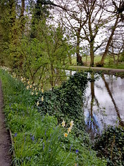 20170415_124747 (dkmcr) Tags: ruffordoldhall nationaltrust tudor heritage history lancashire daytrip attraction tourist rufford 15th april 2017