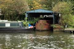 Holey Hulk (innpictime ζ♠♠ρﭐḉ†ﭐᶬ₹ Ȝ͏۞°ʖ) Tags: cambridgeshire river boats wild greatouse ely barge holed bushes cruiser narrowboat 523961230272970 babylon steelhulled rusty boatyard boatshed hulk