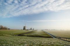 20170118-Canon EOS 750D-0809 (Bartek Rozanski) Tags: stompwijk zuidholland netherlands leidschendam holland nederland greenheart groenehart grondzeiler windmill traditional dutch frost frozen polder ngc