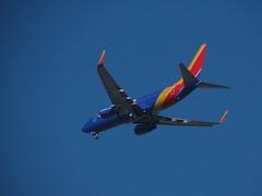 (don1775) Tags: baltimoreboston bwibos n7849a boeing73771b planespotting heavy kbos dorchester 2017 spring aviation aviationphotography boston newengland transporation southwest 737 boeing737