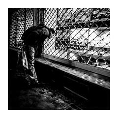 watchedwatches (seba0815) Tags: ricohgrdiv grdiv monochrome streetphotography street streetshot people shop window watching walk night neonlights dark mood grain city urban frankfurt bw blackwhite black white blanc noir bianco nero schwarzweis czarnobiale seba0815 square