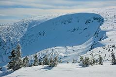 Karkonosze Mountains (Grzesiek.) Tags: czechy czechrepublic karkonosze winter zima