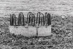 Pesebre (Oscar F. Hevia) Tags: pesebre comedero barro vacas manger feeder mud cows asturias asturies colunga españa paraisonatural principadodeasturias spain