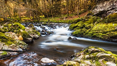 Testing at the Divie (Stoates-Findhorn) Tags: 2017 divie falls findhorn firecrest hitech logie moss nd5 river rocks scotland trees forres moray