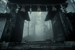 Black Gate (ScottSimPhotography) Tags: japan japanese kyoto gate mist misty fog foggy forest trees dark path asia asian moody dramatic drama historic history wood wooden steps bu