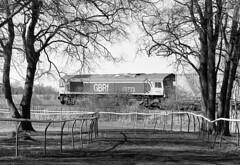 Racehorse and carthorse (Fray Bentos) Tags: class66 freight elyipswichline containertrain mamiyac220 ilfordhp5 rodinal adoxaph09 66773 mamiyasekor180mmlens