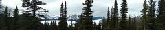 Blueberry Hill - PLPP (Alberta Parks) Tags: winter outdoors discover mountains trees enjoy landscape peter lougheed pp