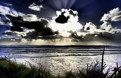 DRAMA over the OCEAN (Lani Elliott) Tags: lanielliott lani elliottlani nature skies drama dramatic dramaticskies beach oceanbeach sky cloud clouds naturephotography australia tasmania strahan scene scenic view light lightrays lightbeams weatherphotography