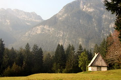 In The Country (Alan1954) Tags: slovenia rural lakebohinj holiday 2016