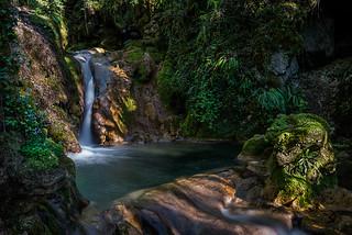 Le ruisseau de la gorge