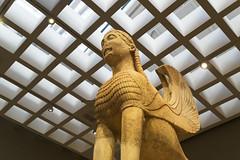 "Delphi, The Naxian Sphinx - III (egisto.sani) Tags: delfi museo sphinx sfinge ""naxian sphinx"" ""sfinge dei nassi"" ""high archaic"" ""proto arcaico"" style stile period periodo archaic arcaico arcaica greek greca arte art marble marmo relief rilievo "" siphnian treasury"" ""tesoro sinfi"" phocis focide delphi ""archaeological museum"" ""museo archeologico"""