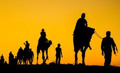 The Desert Safari.... (blackdiegoz) Tags: indian india incredibleindia travel streetsofindia sunset asia silhouette desert rajasthan adventure color colours heritage