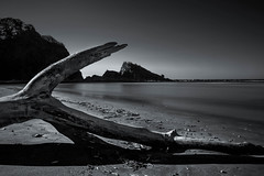 Driftwood (s.W.s.) Tags: sea water beach rock blackandwhite wood longexposure pacific playa costarica neutraldensity driftwood nikon d3300 lightroom