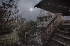 Au clair de la lune... (ElfeMarie) Tags: château manoir castel manor abandonné abandoned decay derelict forgotten lost oublié escalier stairs lune moon garden jardin night nuit urbex