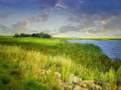Small lake view (mrbillt6) Tags: northdakota landscape rural prairie lake water grass outdoors country countryside rocks