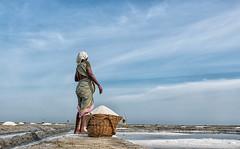 Waiting (Padmanabhan Rangarajan) Tags: salt marakkanam pans lady pondicherry waiting working india