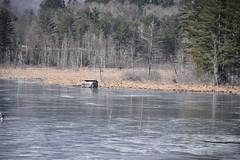 Frozen Lake (Rajasekar S) Tags: frozen water waterbody frozenlake lake nature chill ice